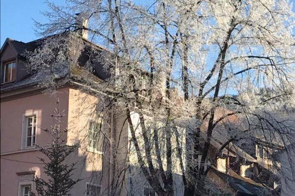Winterwunderland-2