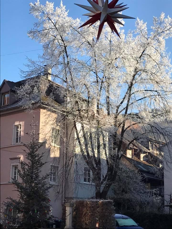 Winterwunderland Staufen